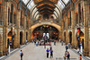 Museum of Natural History - London