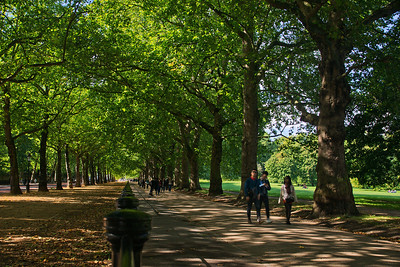 A walk along the Constitution Hill through Green Park