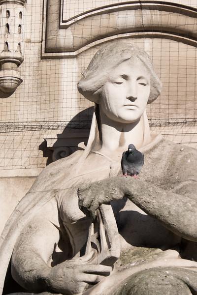 Hmmm, I wonder how I get this damn bird off my arm...?
