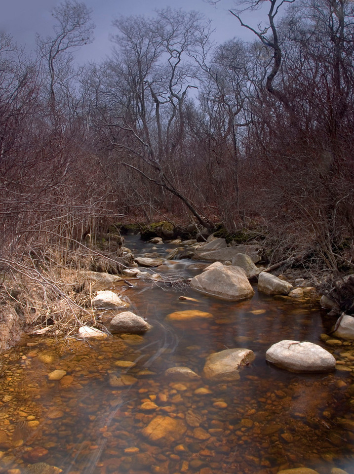 Ogden's Brook, Montauk