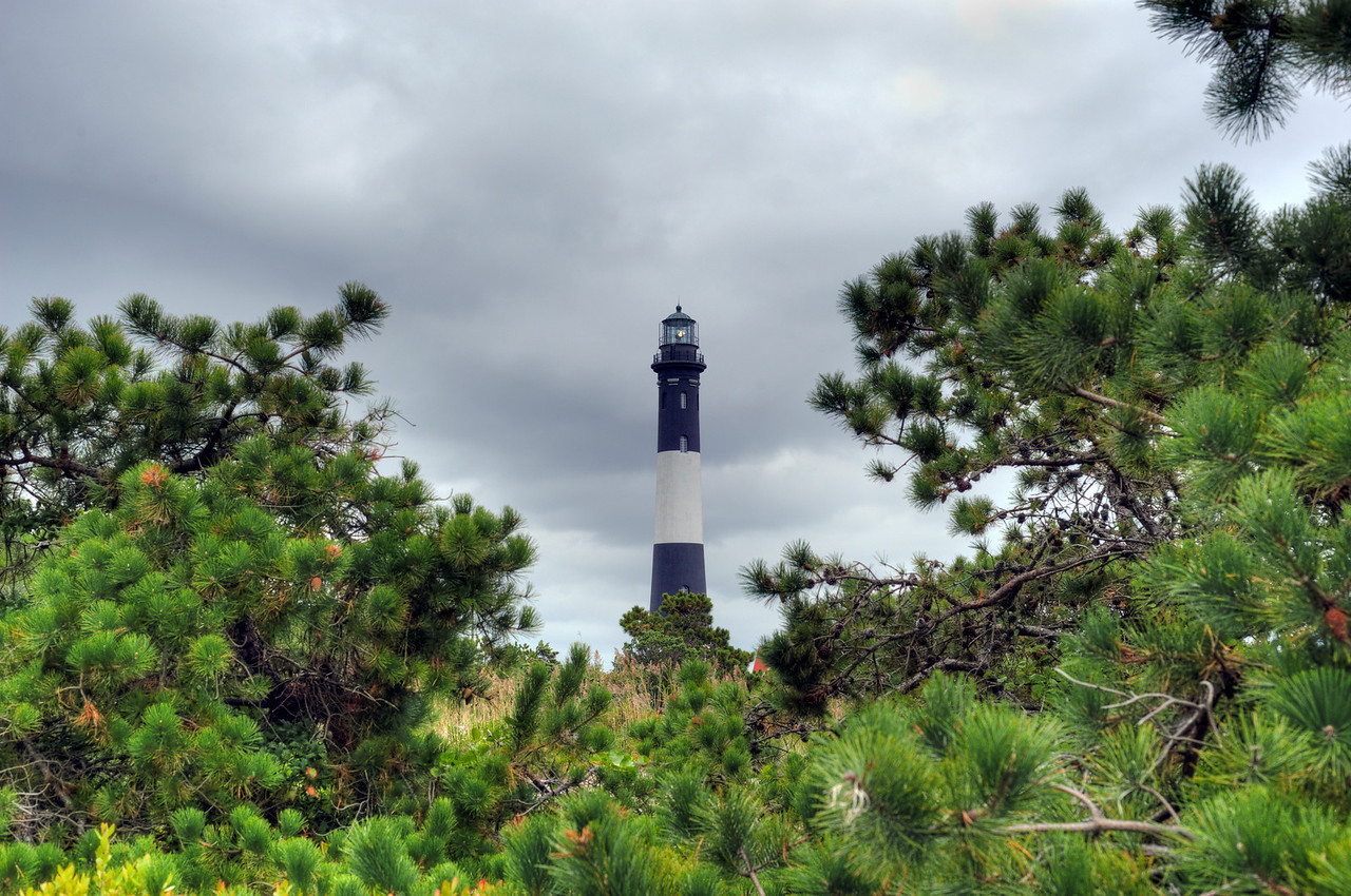 Fire Island Lighthouse in dwarf pines.