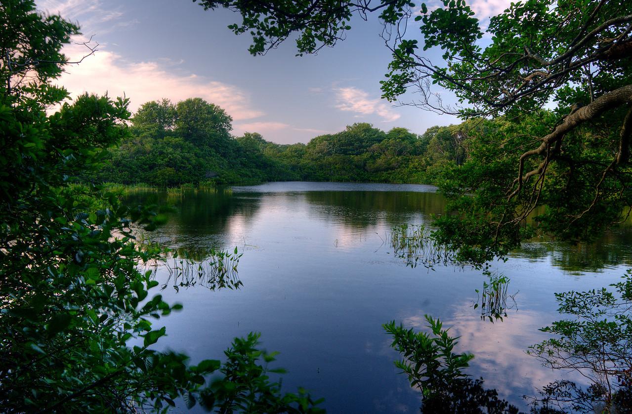 Money Pond, Montauk NY