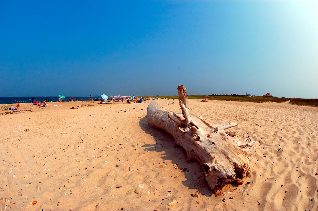 The Gin Beach Log