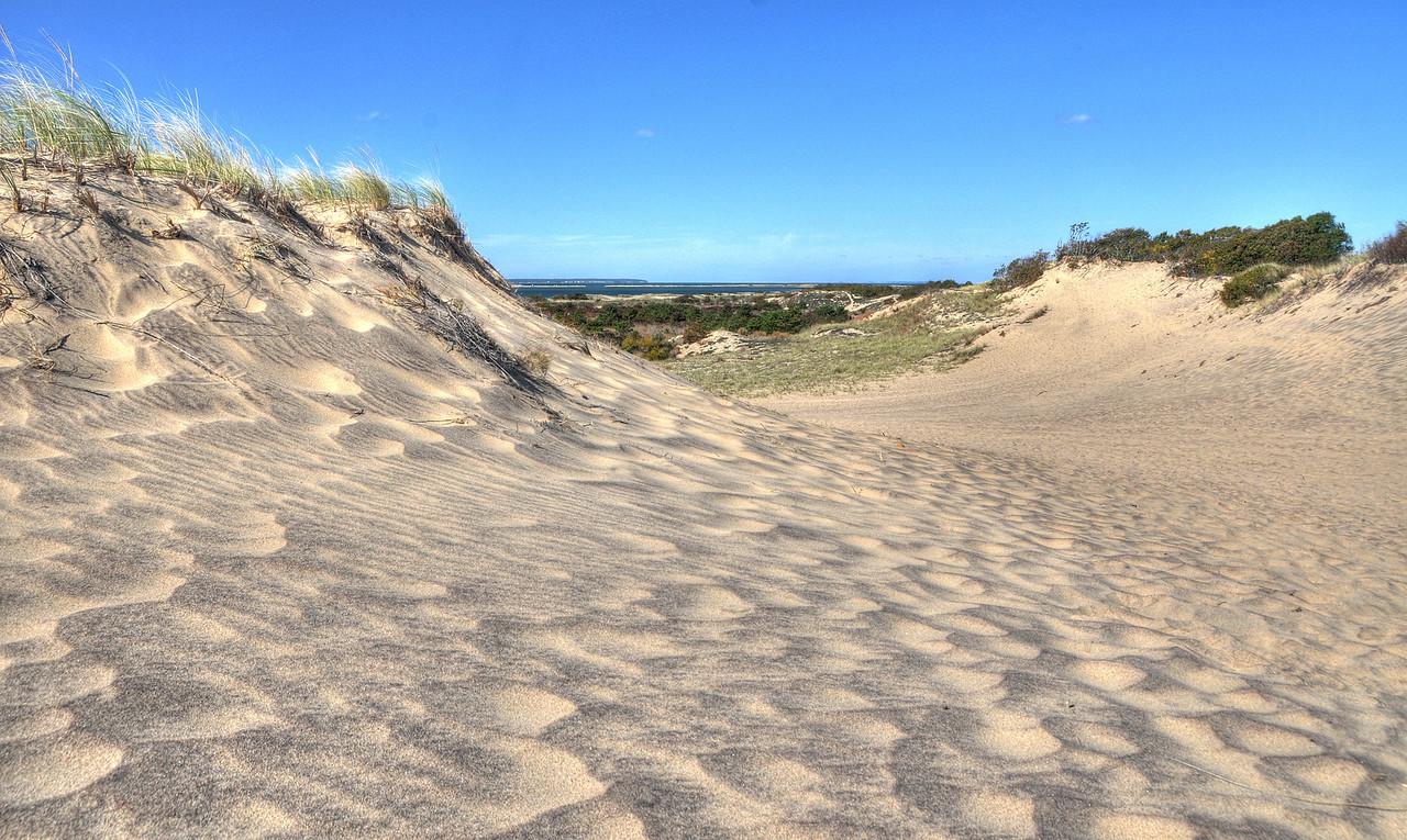 Walking Dunes, Montauk, in autumn