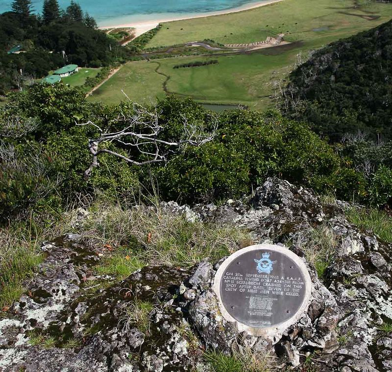 The memorial plaque above the crash site which is hidden by the bushes in the middle ground.