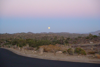 Moonrise in Joshua Tree National Park