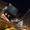Walt Disney Concert Hall - designed by Frank Gehry