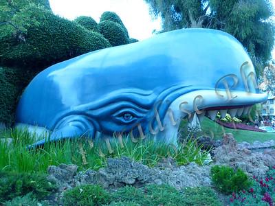 Blue Whale 588