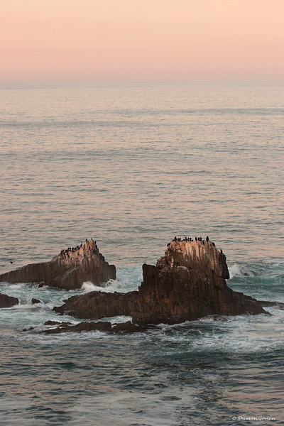 Bird Rock, Laguna Beach