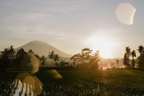 Lost Bali