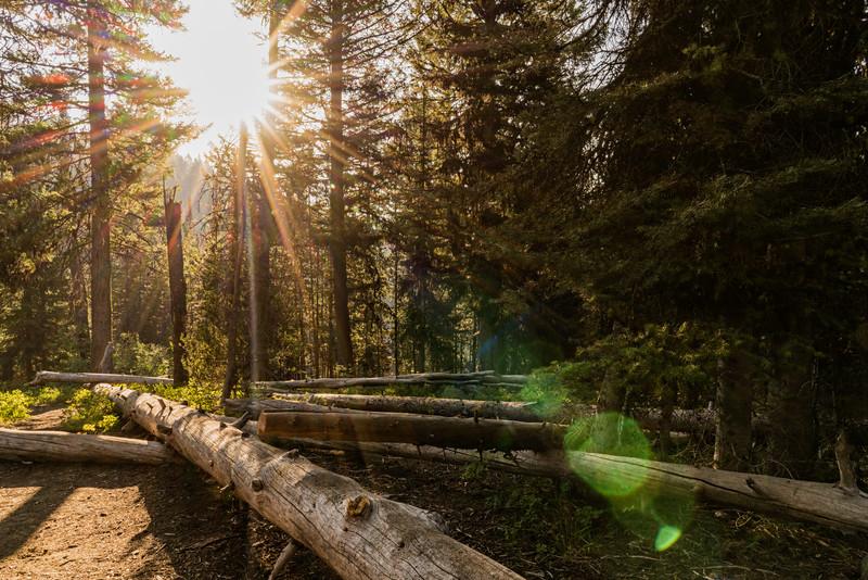 Sunny Camping Spot