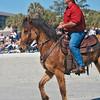 High stepping pony