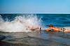Sea wall surfers on Lake Michigan