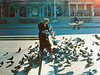Pigeon lady in Grant Park