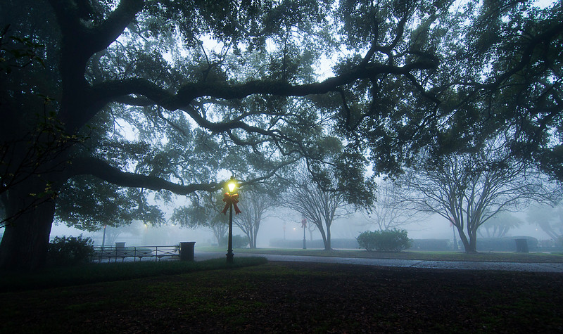 Times like this as a sleeping city is further silenced by fog, I have always felt exultant and empowered  -- a lone explorer -- or survivor.