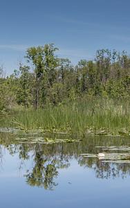 Lowes Lake-9110