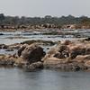 Hippopotamus Pond, Crocodrile River downstram, Kruger Park.
