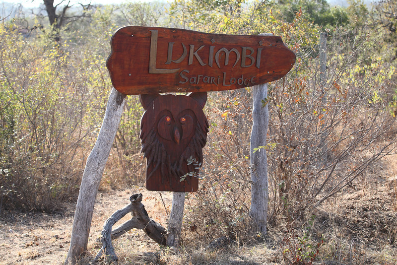 Lukimbi Safari Lodge is named after the elusive Lukimbi - half Eagle Owl and half Lion.<br /> Lukimbi Safari resort, fue llamado asi, por el animal mititco elusivo Lukimbi: mitad Aguila/lechuza, y mitad Leon.