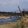 Hippopotamus Pond, Crocodrile River upstram, Kruger Park.