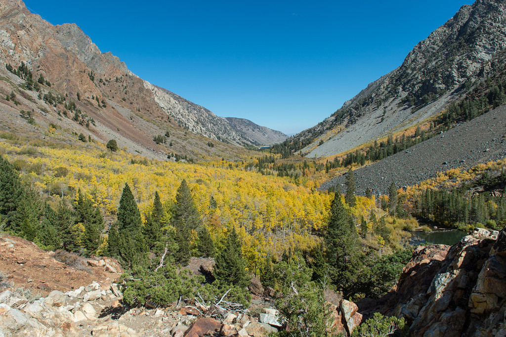 First views of Lundy Canyon, about 8000 ft. Perfect color.