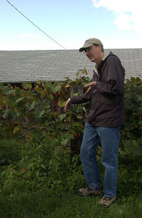 Cousin Dave displaying grapevine in Bristol, IN