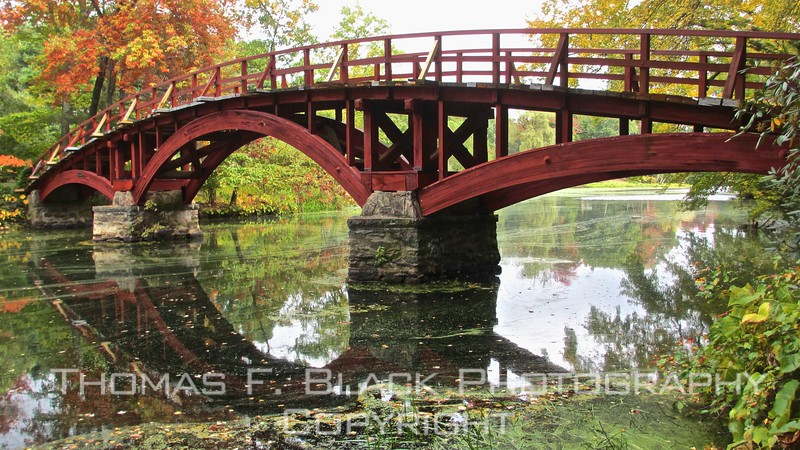 this and seven frames following, fall scenes of charles river, natick. bridge is privately owned.