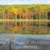 this and three frames following, pond along hwy. 7 near great barrington.