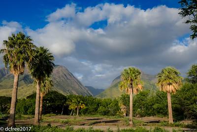 PALI GREEN MOUNTAINS
