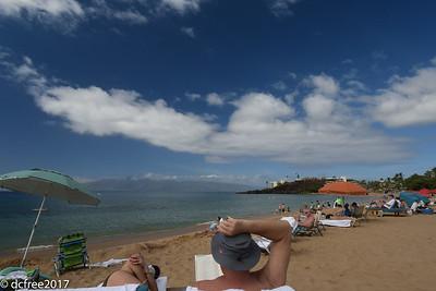 ON THE BEACH WHALER
