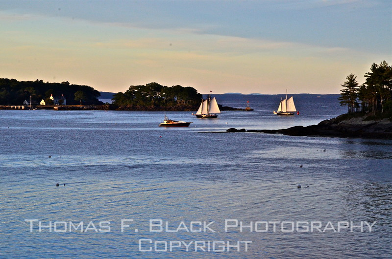 Pair of charter schooners returning to Camden harbor at twilight following a cruise on a glorious September day. Curtis Island is to right. [UFP092012]