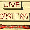 Lobsters, lobsters everywhere one turns. [UFP101712]