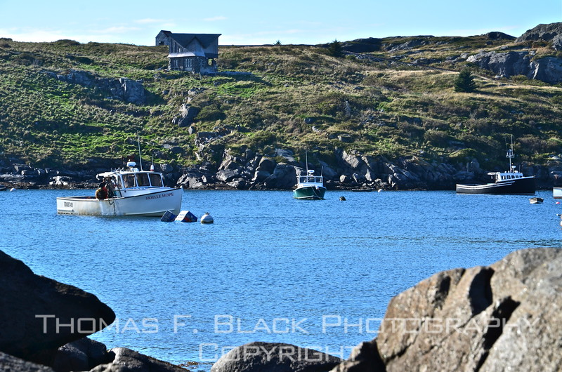 Lobster boat in foreground had just motored into Monhegan harbor with day's yield. Tempting at $3.00 per pound wholesale, but less tempting for those of us who might end up in emergency room with life-threatening allergic reaction. (Aside to others who are shellfish-averse: Always carry Benedryl, the magic antidote to hives.) [UFP100912]