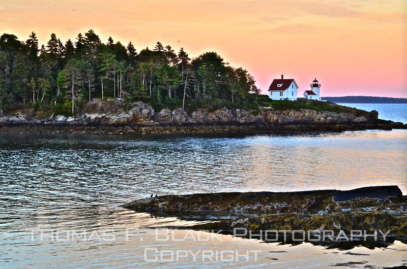 "This gallery is devoted to photographs taken in Maine during an extended visit, from Sept. to Oct.  2012 and again in sept. 2014. Images are loosely organized, by subject and/or by venue, not chronologically. <br /> <br /> The ""base camp"" from which I operated was a very nice rental house in Rockport, a laid-back town of about 3,200 year-round residents. It lies south of and contiguous to Camden, which, like Rockport, is a quaint harbor village, albeit slightly larger in stay-put population. <br /> <br /> Although the main purpose of the trip was to shoot ""fall foliage"" -- mission accomplished! -- fortunately, there was time aplenty to include other subjects, among them coastscapes, lobster-fishing activity and myriad ""random"" scenes and objects mostly stumbled upon. <br /> <br /> Many of the foliage pictures were taken over a three-day period, Oct. 3-5, in and around Bethel, a charming hamlet nestled in the White Mountains near the Vermont border. The biggest winter-season attraction thereabouts is the Sunday River Ski Resort. <br /> <br /> Frame above and three following are of Camden harbor. The lighthouse and head light (a.k.a. beacon) are located on Curtis Island. The tower seen here, only 25 feet tall, was built in 1896 to replace the original, built 61 years earlier. For additional images of the harbor and the town, drill down into the gallery. <br /> <br /> Camden is a charming, historic working lobster-fishing town. In summer months it is inundated by picture-snapping tourists from all corners of the globe. Chief among the things that make Camden so appealing are the absence of chain stores (nearest Wal-Mart is in Rockland, 15 miles away) and prohibition of back-lit signs. <br /> <br /> Many artists, among them novelist Richard Russo, call Camden home. The waterfront along the horseshoe-shaped harbor is graced by magnificent mansions, some serving as summer quarters for folks who never will be found in a bread line. That said, few if any flaunt their wealth, as witnessed by lack of by notable -- and noticeable -- absence of livery limos. ""Flaunting"" not verboten, of course, but calling attention to oneself is definitely frowned upon. <br /> <br /> Note to visitors: 1) Gallery is perhaps best viewed as a slideshow; click on Slideshow button above in right corner.  2) Prints may be ordered directly from a third-party source; click on Buy. I use same vendor and I can assure you that the turnaround is swift and that the quality is first-rate. 3) Feel free to leave any comments in the space provided under each frame and/or contact me via website link. Thank you!  <br /> <br /> FIRST three frames are of camden harbor. [UFP092012]<br /> <br /> ~ TFB"