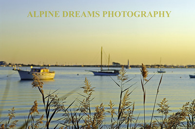 I called this GRASSES & BOATS.  I wanted to get the grass crisp and the boats a little fuzzy. The early sun had just hit the hull on the left.