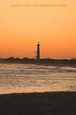 Called LIGHTHOUSE-TWILIGHT the amber sky and the single gull add to this soft pastel shot after the sun went down.