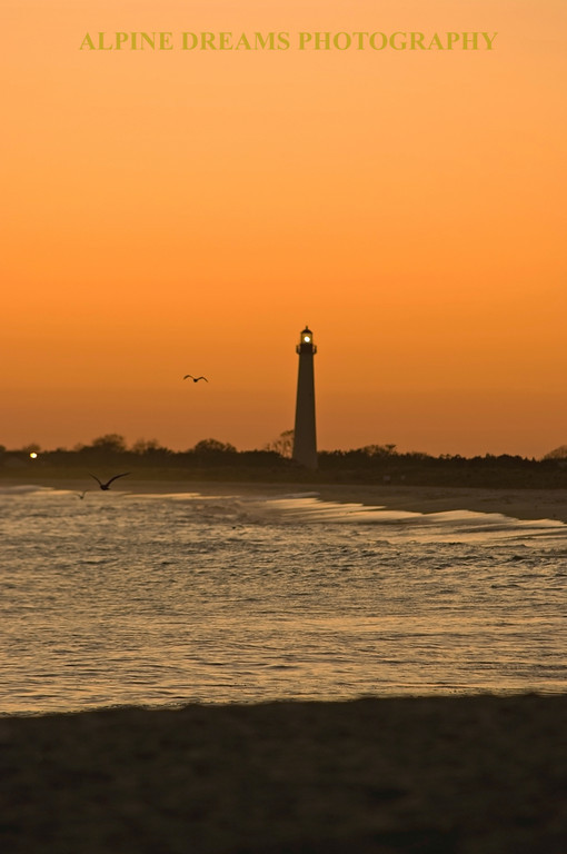 ORANGE SKY LIGHTHOUSE SHADOWS appeals to me because of the mist, the lights and the birds. You may have to see the extra large picture to appreciate the birds. Just right click on the picture and click on x-large to see any picture larger or just watch a slide show.