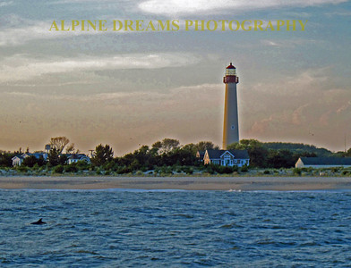 DOLPHIN & LIGHTHOUSE CANVASED