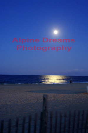 MOONLIT-BEACH-NITE