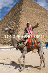 Friendly Camel jockey.  Giza