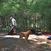 Tom and Jim confer on setting up our campsite on Crab Lake.<br /> Maggie supervises.
