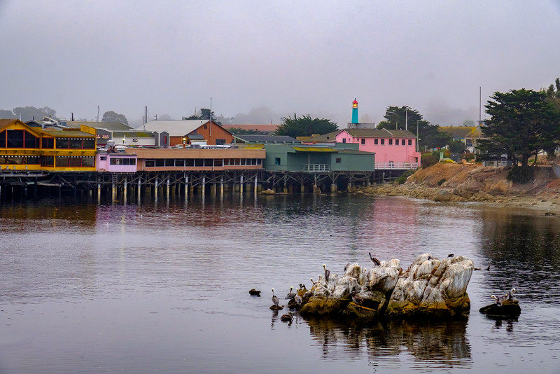 """FOGGY"" MORNING AT THE MONTEREY WHARF"