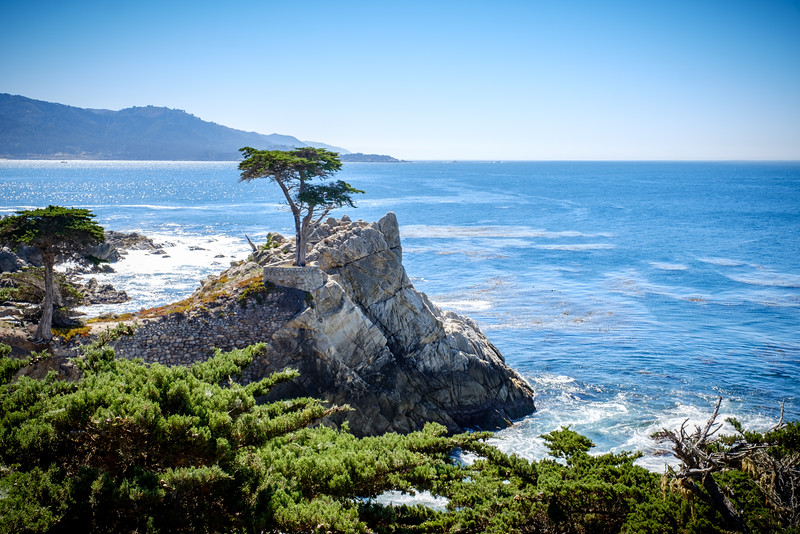 LONE CYPRESS AT SPYGLASS HILL GOLF LINKS
