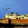 wm33__Essaouira
