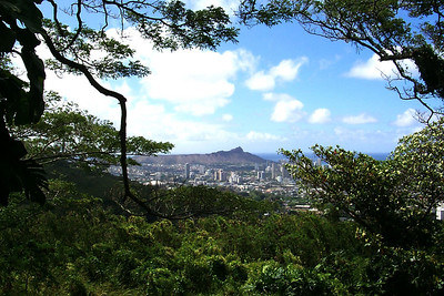 Diamond Head View from Hill over Honolulu