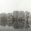A 2 shot photomerge panorama of Boultham park in winter