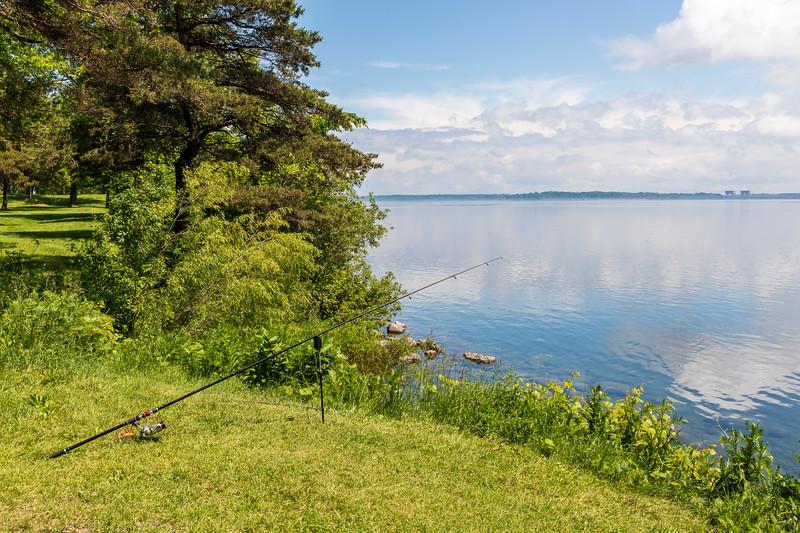 Carp pole ready to fish