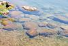 Rocks along the shoreline