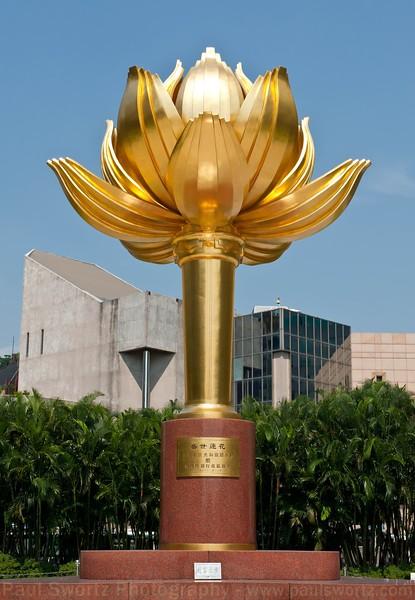 Lotus, symbol of Macau