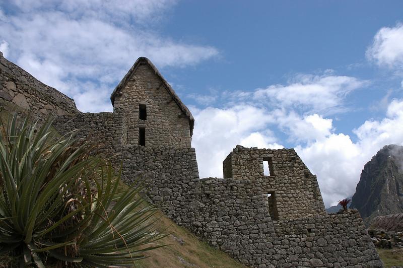 Machu Picchu The Citadel 236