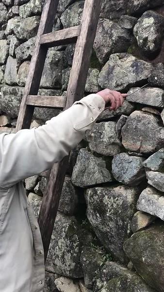 Machu Picchu to Galapagos